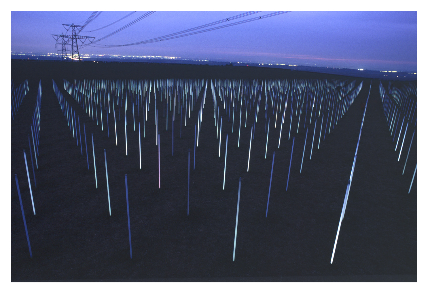 Photo of 'The field' by Richard Box showing many lights under a powerline